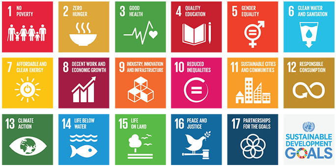 The sustainable development goals as outlined on the United Nations website.